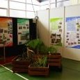 Stand foire expo 2013/1